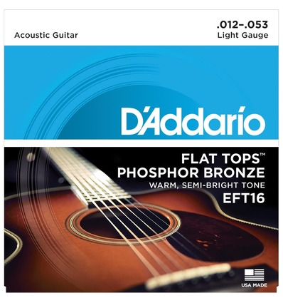 EFT16 FLAT TOPS PHOSPHOR BRONZE REGULAR [12-53]