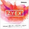 DZ312 ZYEX - LA