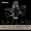 K311W KAPLAN SOLUTIONS - MI